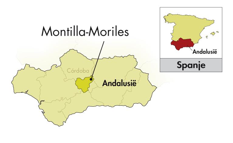 Alvear Montilla-Moriles Oloroso Asunción halve fles