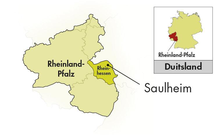 Weingut Thörle Rheinhessen Spätburgunder