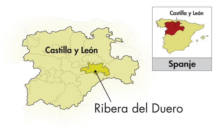 Bodegas Rodero Ribera del Duero 9 meses